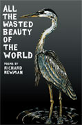 All the Wasted Beauty of the World - poems by Richard Newman - front cover (click to enlarge)