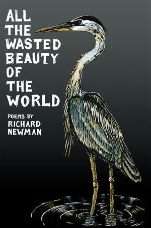 All the Wasted Beauty of the World - Poems by Richard Newman